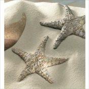 starfishsm
