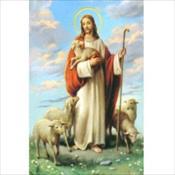 The Shepherd PC
