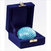 Sea Shell Keepsake