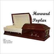 Harvard Poplar