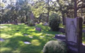 Sacred Heart Cemetery - Palos Hills