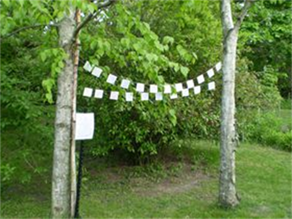 All are welcome to visit our Tibetan Flag Garden in the garden's behind Pray Funeral Home. The Prayer Flags made of colorful rectangles of cloth strung on a rope, are inscribed with the names of deceased loved ones, and suspended between two trees in the Gardens behind Pray Funeral Home. Tibetan culture held the belief that the prayers for these individuals will be blown by the wind to spread good will and compassion to all.