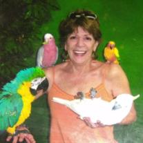 Celia Ann (Candy Jones) Thacker Obituary - Visitation