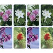 Assorted Flowers PC