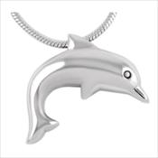 19. Dolphin