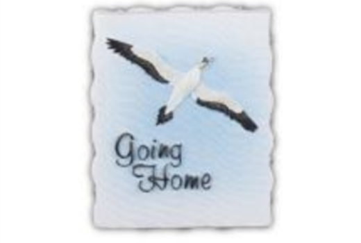$Going Home