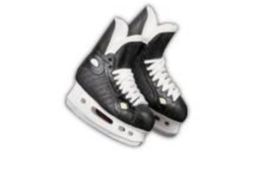 $Hockey