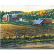 Farm Scene (533)