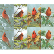 Cardinal Assortment (58PC07)