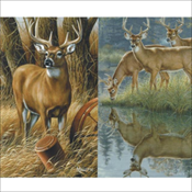 Deer Assortment (847)