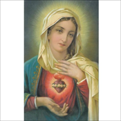 Immaculate Heart of Mary (831)