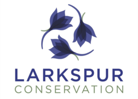 Larkspur Conservation